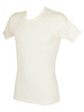 Camiciola uomo manica corta girocollo 100% lana merinos RAGNO articolo 003157