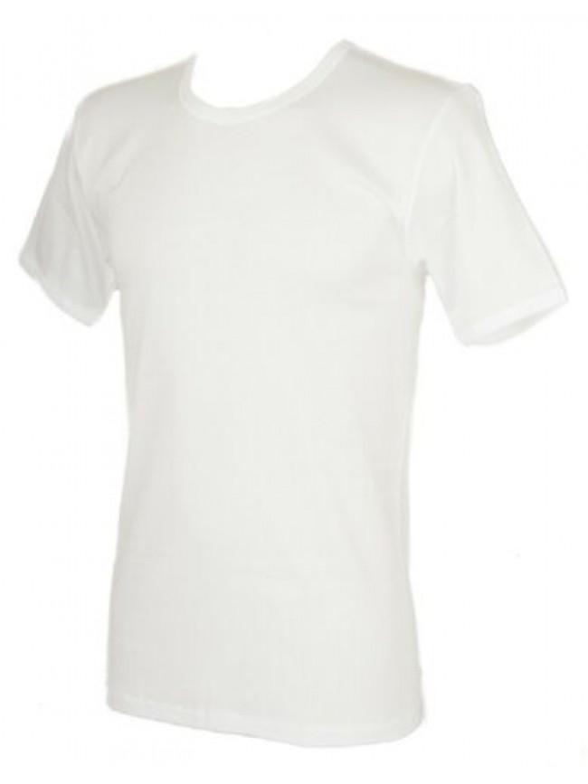 T-shirt camiciola canottiera uomo cotone filo di Scozia manica corta girocollo R
