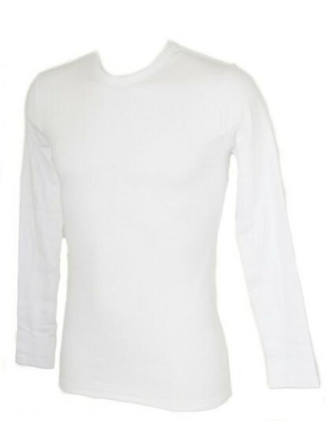 T-shirt uomo caldo cotone manica lunga girocollo RAGNO SPORT articolo 601959 NAT